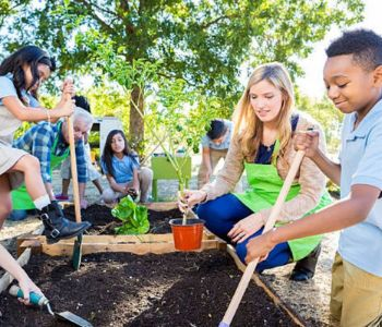 School Kids Gardening